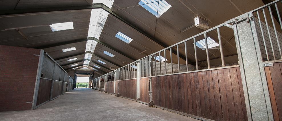 Stallen VDT Horses