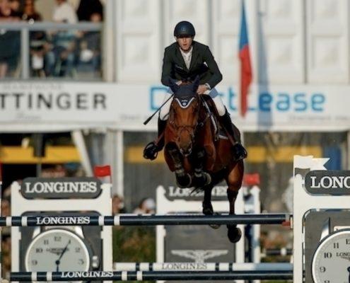 Flash - VDT Horses - Van den Tillaart